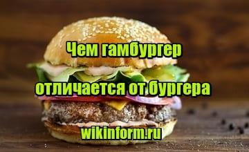 изображение чем гамбургер отличается от бургера
