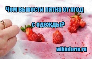 картинка чем вывести пятна от ягод с одежды