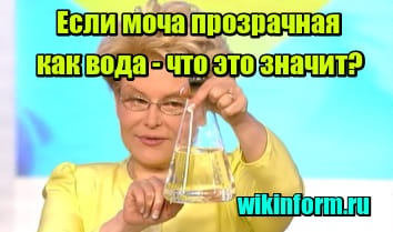 картинка если моча прозрачная как вода что это значит